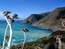 Strada principale californiana 1 del litorale fotografie stock libere da diritti