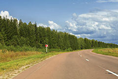 Strada principale che lascia in una distanza vicino al legno Immagine Stock