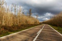 Strada principale che passa attraverso i ares rurali Fotografia Stock Libera da Diritti