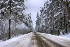 Strada principale con l'inverno della foresta, strada, inverno attillato della foresta, paesaggio freddo Precipitazioni nevose pe fotografia stock