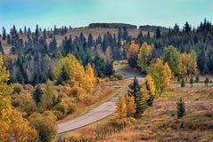 Strada principale di autunno Immagini Stock