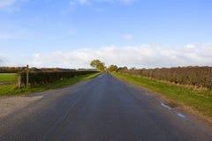 Strada principale di autunno Fotografie Stock Libere da Diritti