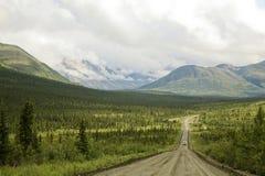 Strada principale di Denali, Alaska S.U.A. Immagini Stock