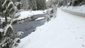 Strada principale di inverno, Manning Park, BC archivi video