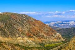 Strada principale 120, foresta nazionale di Inyo, California, U.S.A. Fotografia Stock