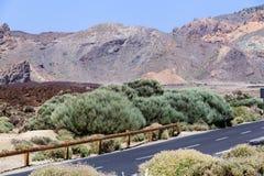 Strada principale in Los Roques de Garcia, vulcano emblematico di Teide dell'isola di Tenerife Fotografie Stock Libere da Diritti