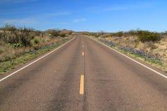 Strada principale scenica del deserto Immagini Stock