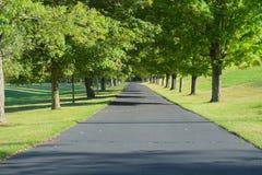Strada privata allineata dagli alberi Fotografie Stock