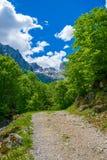 Strada rocciosa d'avvolgimento Fotografia Stock