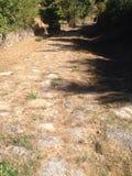 Strada romana immagine stock