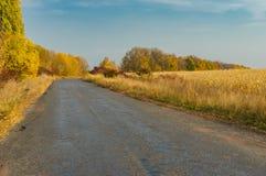 Strada rurale alla stagione di caduta nel oblast di Sumskaya, Ucraina Fotografia Stock