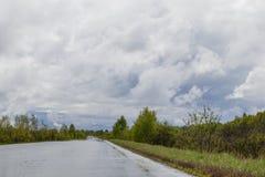 Strada rurale bagnata, entrante in distanza Intorno ai boschetti densi degli alberi ed agli arbusti Cielo nuvoloso fotografia stock