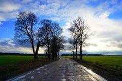Strada rurale, campo verde, nuvole bianche in cielo blu Immagini Stock Libere da Diritti