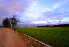 Strada rurale, campo verde, nuvole in cielo blu Fotografia Stock