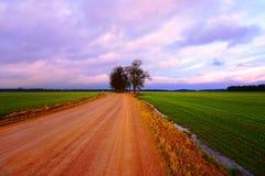 Strada rurale, campo verde, nuvole variopinte in cielo blu Fotografie Stock Libere da Diritti