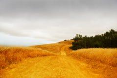 Strada rurale con il cielo tempestoso Fotografia Stock