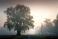 Strada rurale del paese basso immagine stock