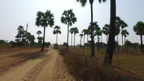 Strada rurale di Bagan, Myanmar video d archivio