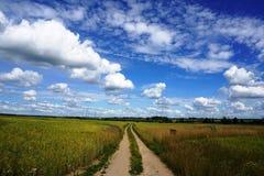 Strada rurale, giacimento di grano, cielo blu Immagini Stock Libere da Diritti