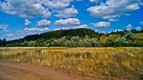 Strada rurale in   giorno di estate. Immagine Stock