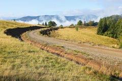Strada rurale lungo il bordo della foresta Fotografia Stock Libera da Diritti