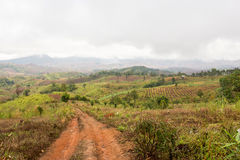 Strada rurale in montagna immagini stock