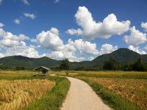 Strada rurale nella montagna sotto cielo blu con le nuvole fondo, modo nell'azienda agricola Fotografia Stock