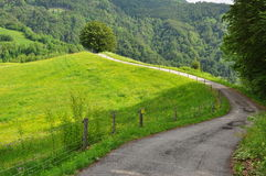 Strada rurale nella regione alpina di Carnia, Friuli, Italia Fotografia Stock