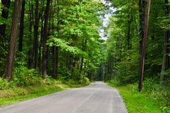 Strada rurale senza fine in una foresta di legno duro orientale degli Stati Uniti Fotografia Stock