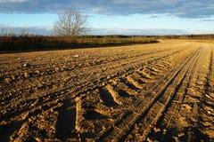 Strada rurale sporca e cielo blu nuvoloso Immagine Stock