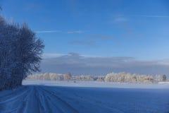 Strada rurale vuota lungo il bordo della foresta nell'inverno fotografia stock