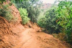 Strada sabbiosa della sporcizia che allunga attraverso la giungla cambogiana immagini stock