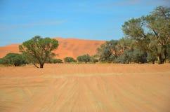 Strada sabbiosa in Namibia Fotografia Stock Libera da Diritti