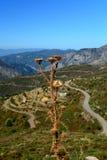 Strada scenica nelle montagne peloponnese Fotografie Stock Libere da Diritti