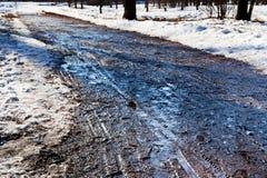 Strada sdrucciolevole nella foresta in anticipo della molla Immagine Stock