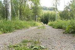 Strada in Siberia, parco nazionale di Shulgan-Tash Fotografia Stock