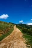 Strada Siria Romania della montagna Fotografie Stock