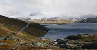 Strada Sognefjell, Norvegia Immagine Stock