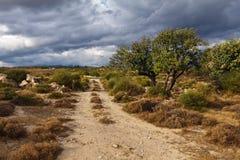 Strada sotto le nubi Fotografia Stock