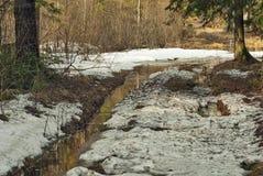 Strada sporca della sorgente Fotografia Stock