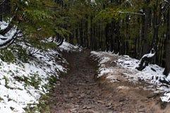 Strada sporca nelle montagne Fotografia Stock