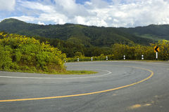 Strada sulla collina Immagine Stock