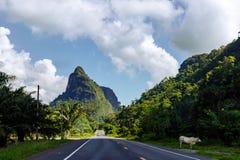 Strada tailandese rurale Immagine Stock
