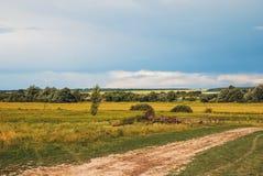 Strada a terra rurale che retrocede nella distanza al paesaggio collinoso della regione di Belgorod Blu profondo soleggiato di gi fotografie stock libere da diritti