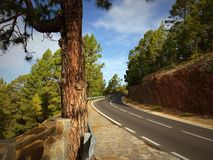 Strada tortuosa della montagna Fotografie Stock Libere da Diritti