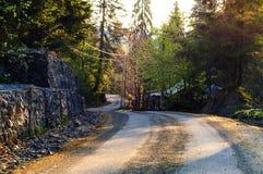 Strada tortuosa della montagna, concetto di viaggio nel selvaggio Carpatico, Ucraina, spazio della copia, Fotografie Stock