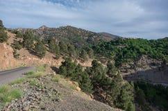 Strada tortuosa nell'alta catena montuosa dell'atlante, Marocco, Fotografia Stock Libera da Diritti