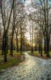 Strada trasversale di inverno in parco Fotografia Stock Libera da Diritti