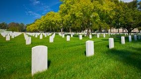 Strada Tree-lined del cimitero Immagini Stock