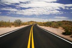 Strada in U.S.A. nel monumento nazionale della canna d'organo, Arizona fotografie stock